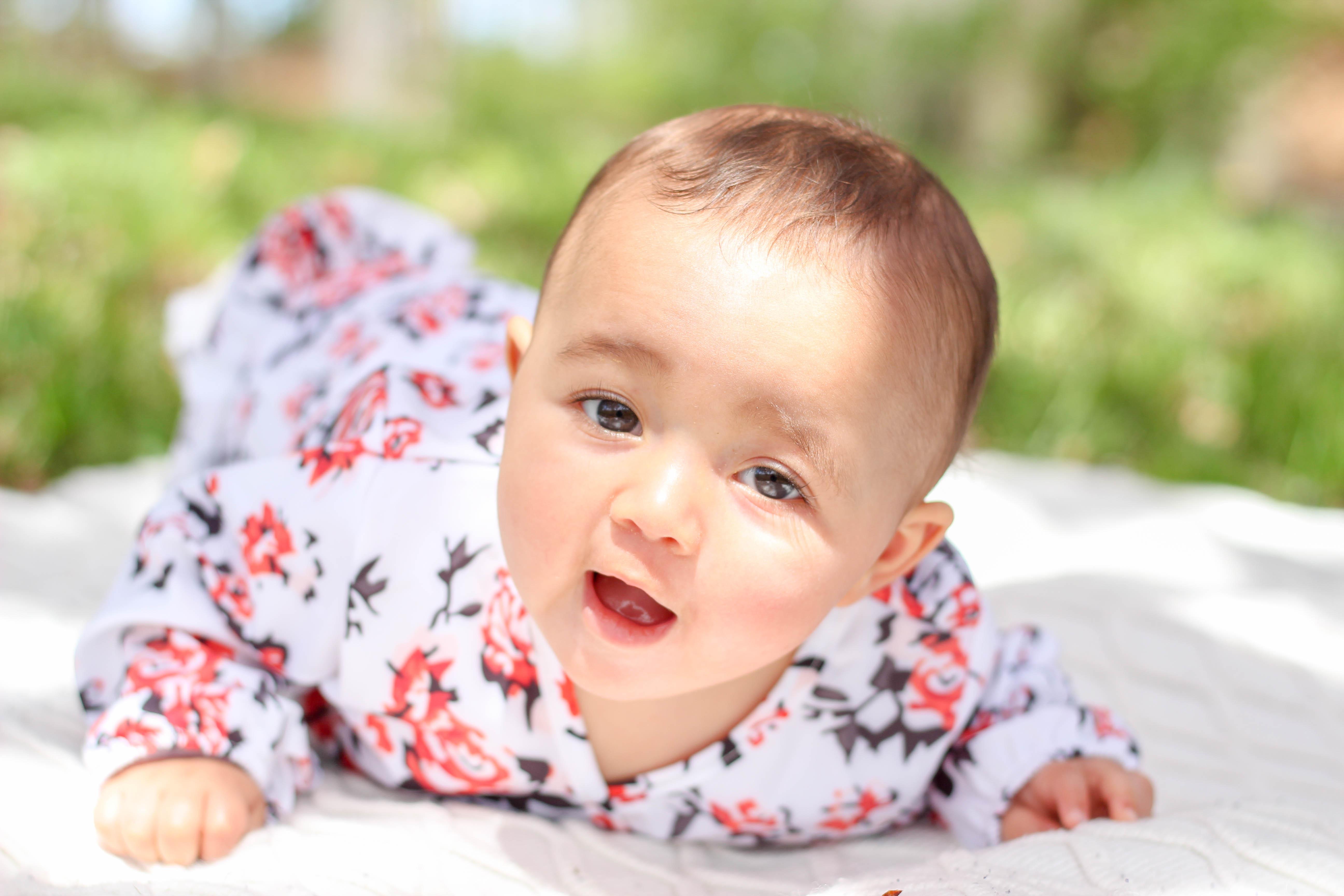 newborn portrait session danbury Connecticut Courtney lewis family portrait photography